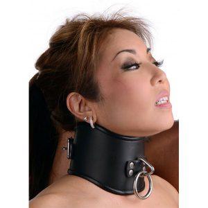 Strict Leather Locking Posture Collar Halsbånd