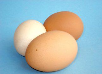 sex æg