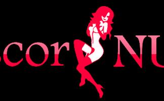 ScorNu logo