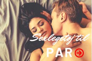 Sexlegetøj til Par