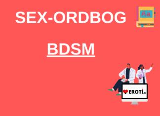 Hvad er BDSM