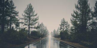 regn sex noveller på de grå sider